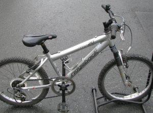 Ridgeback MX20