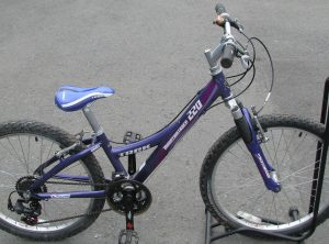Trek MT220 24 Junior MTB
